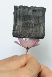 Lightweight graphene-based material sitting on top of a delicate flower.